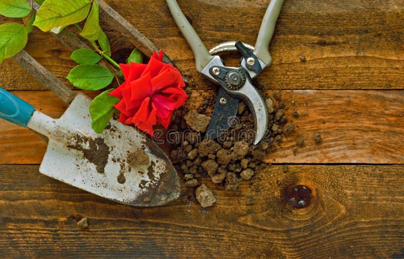 Ferramentas de jardinagem em placas de madeira rústicas fotos de stock royalty free
