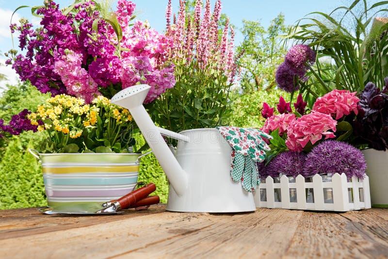 Ferramentas de jardinagem no jardim fotos de stock royalty free