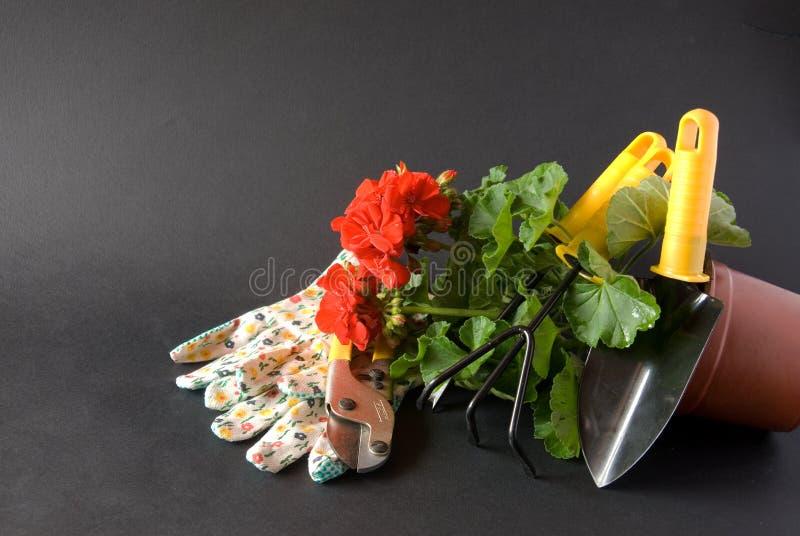 Ferramentas de jardinagem novas, bandeja do bastão imagens de stock