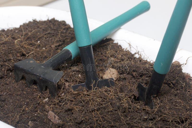 Ferramentas diminutas para a floricultura Pás e ancinhos pequenos para cultivar a terra em uns potenciômetros de flor fotografia de stock royalty free