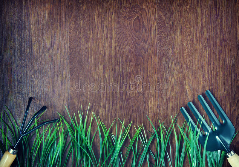 Ferramentas e grama de jardinagem fotos de stock