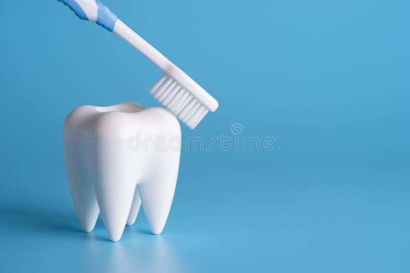 ferramentas saudáveis do equipamento dental para os cuidados dentários De profissional imagens de stock