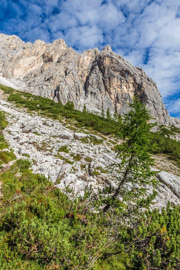 Ferrata Alleghesi, Monte Civetta -, dolomity, Włochy zdjęcie royalty free
