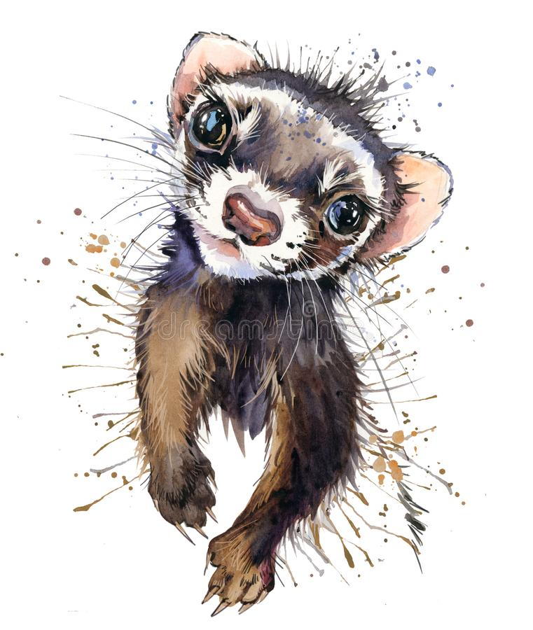 Ferret watercolor illustration. cute marten. fashion Tee shirt design. stock illustration