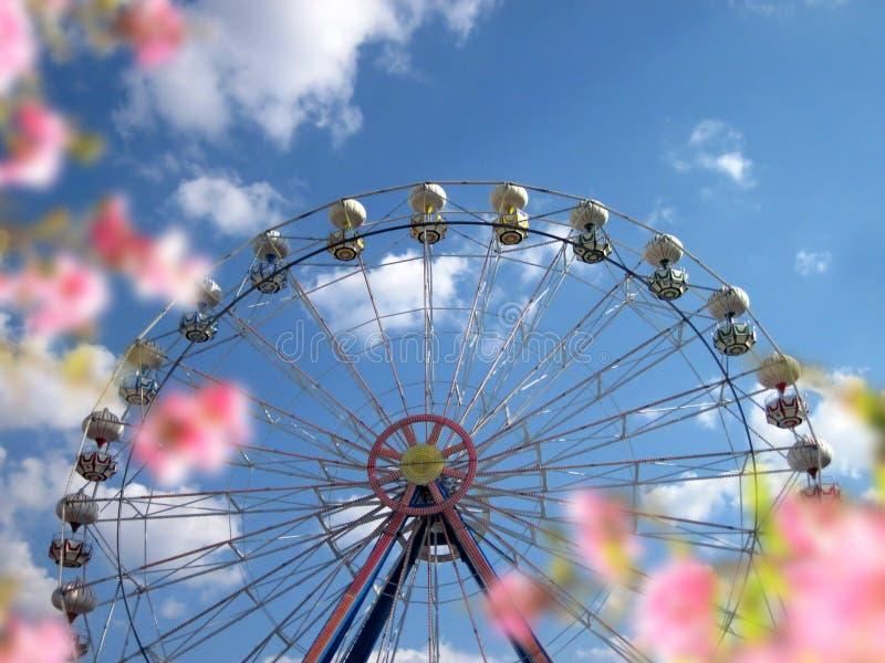 Ferris della rotella immagine stock libera da diritti