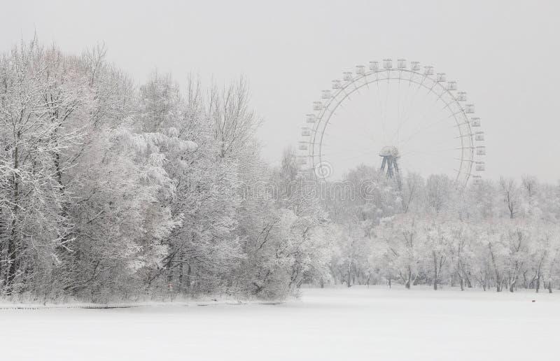 Ferris koło nad śnieg zakrywającym krajobrazem zdjęcia royalty free