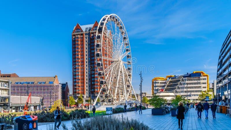Ferris koło otaczający wysokimi wzrostów budynkami w Rotterdam, Holandia obraz stock