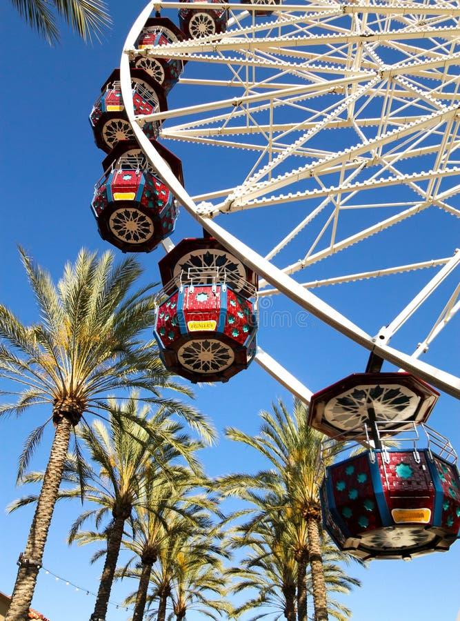 Ferris koło Z drzewkami palmowymi obraz stock