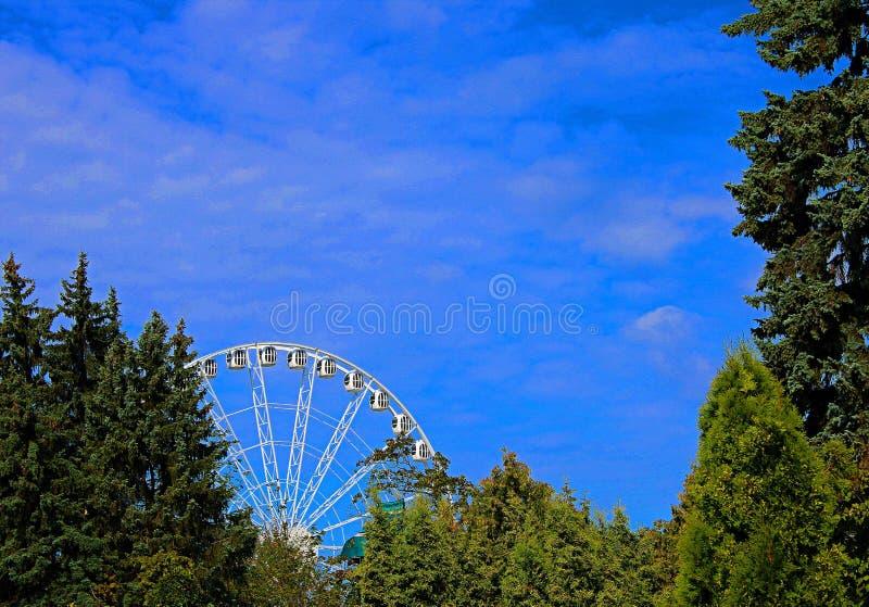 Ferris koło zobaczy przez zielonego ulistnienia drzewa przeciw niebieskiemu niebu zdjęcie stock