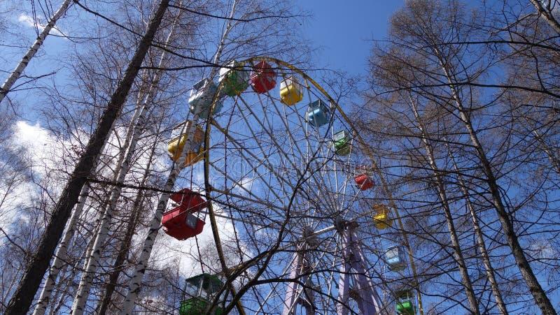 Ferris koło zostaw drzewa zdjęcia stock