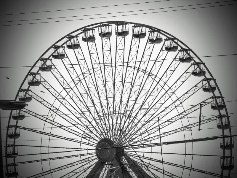 Ferris toczy wewnątrz Nowego - bydło obrazy stock
