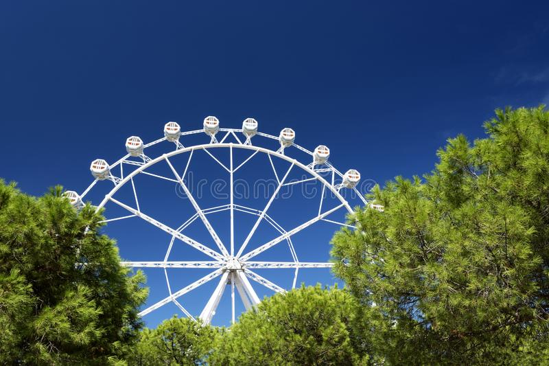 Ferris Wheel in Barcelona stock foto's