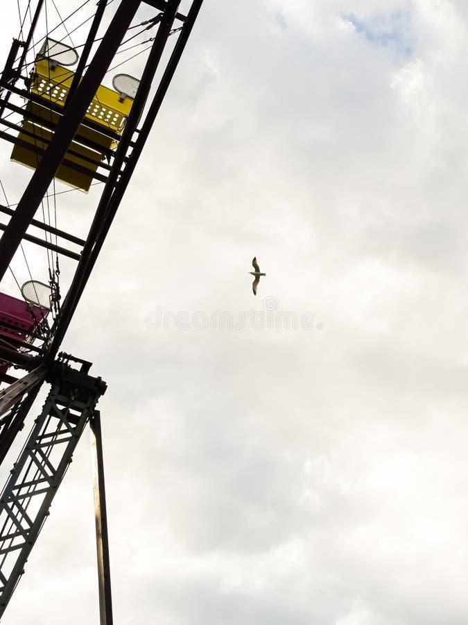 Ferris Wheel en een Zeemeeuw in de Wolken royalty-vrije stock foto