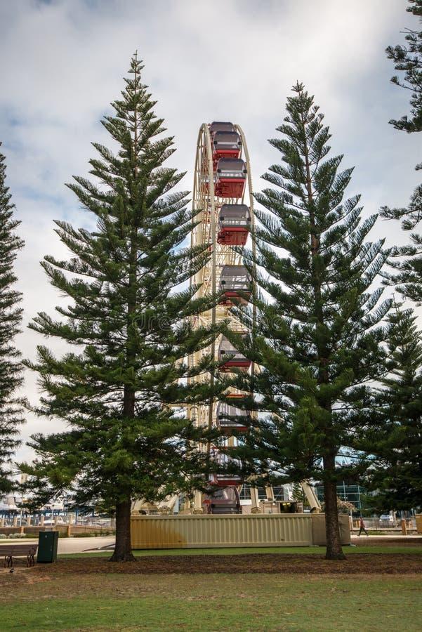 Ferris Wheel in Fremantle stock foto