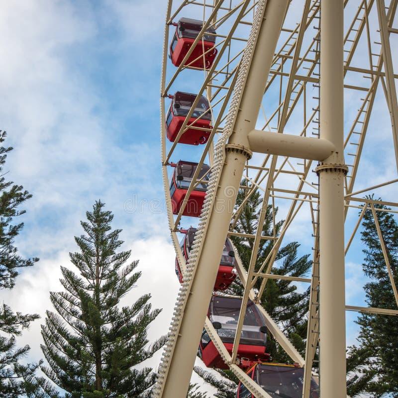 Ferris Wheel in Fremantle royalty-vrije stock foto