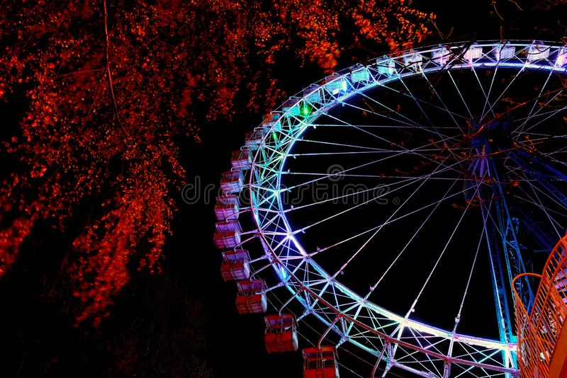 Ferris wheel with multicolor lighting and trees at night royalty free stock photos