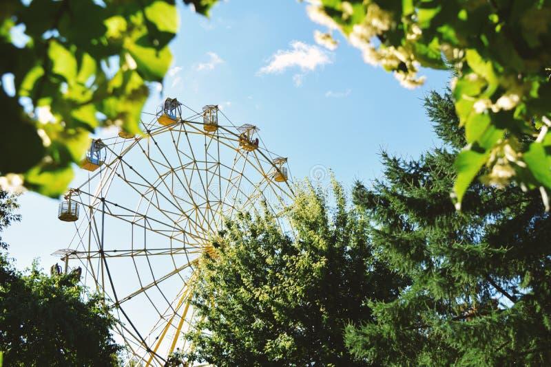 Ferris wheel in the park in summer stock photo