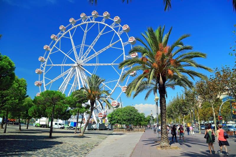 Ferris wheel in port Port Vell in Barcelona, Spain. Ferris wheel among the Palm trees in old port Port Vell in Barcelona, Spain stock photography