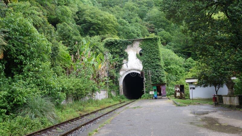 Ferrocarril abandonado en Abjasia imagen de archivo