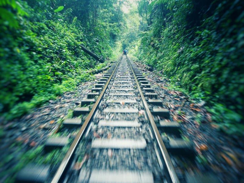 Ferrocarril en el bosque tropical de Colombia imagen de archivo libre de regalías
