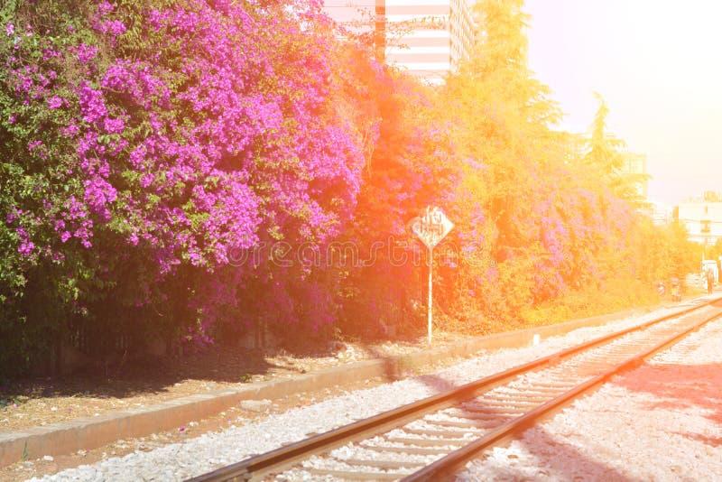 Ferrocarril a través de la ciudad imagen de archivo