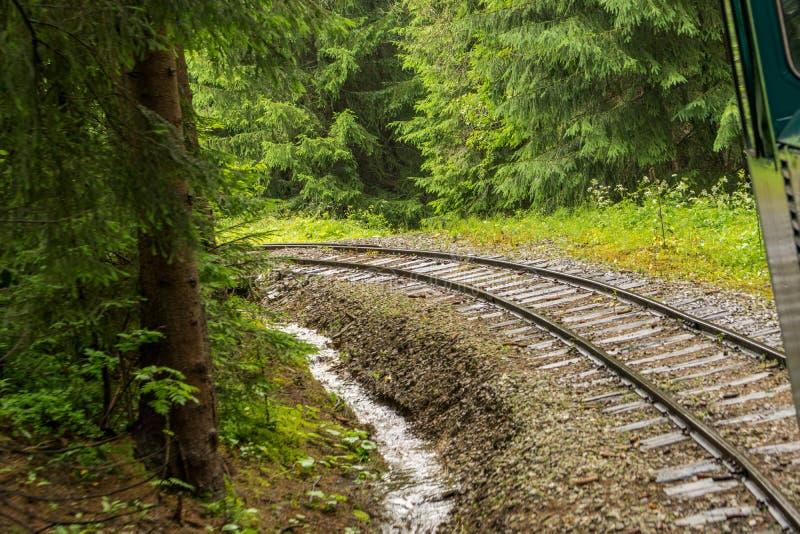 Ferrocarril a través del bosque fotos de archivo