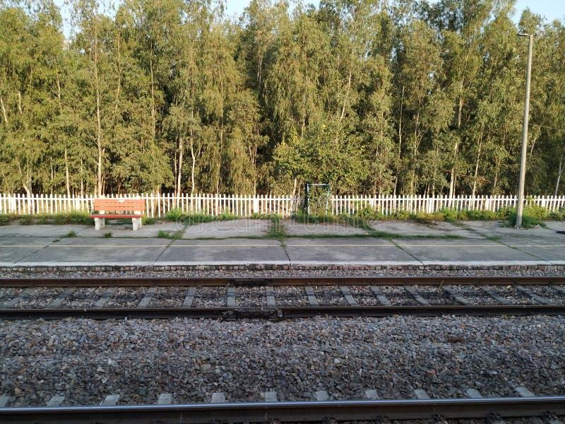 Ferrocarril y árboles largos en el fondo fotografía de archivo