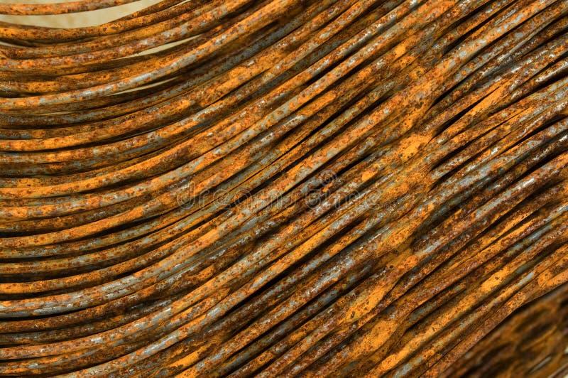 ferrous hår arkivbild