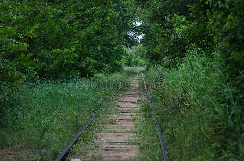 Ferrovia abbandonata Un sito una volta vivace invaso con erba e gli alberi deperimento fotografia stock