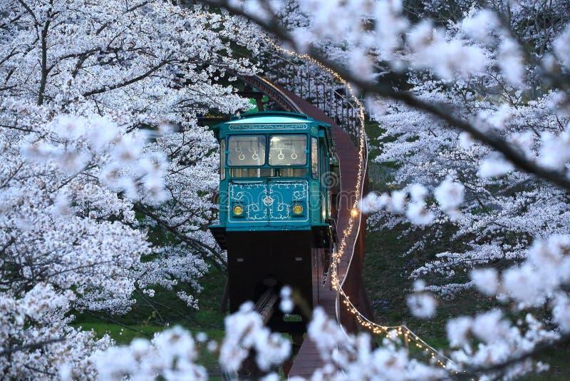 Ferrovia a cielo, parco di Funaoka, Osaka, Giappone fotografia stock