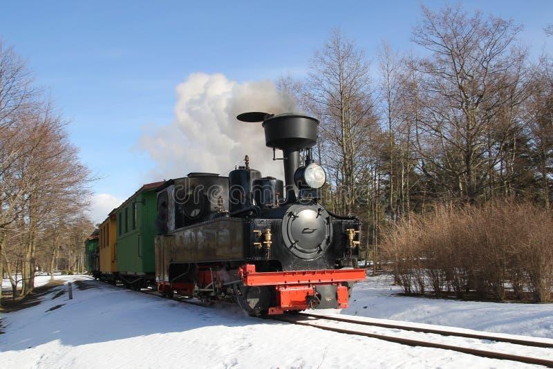 Poca locomotiva a vapore immagine stock