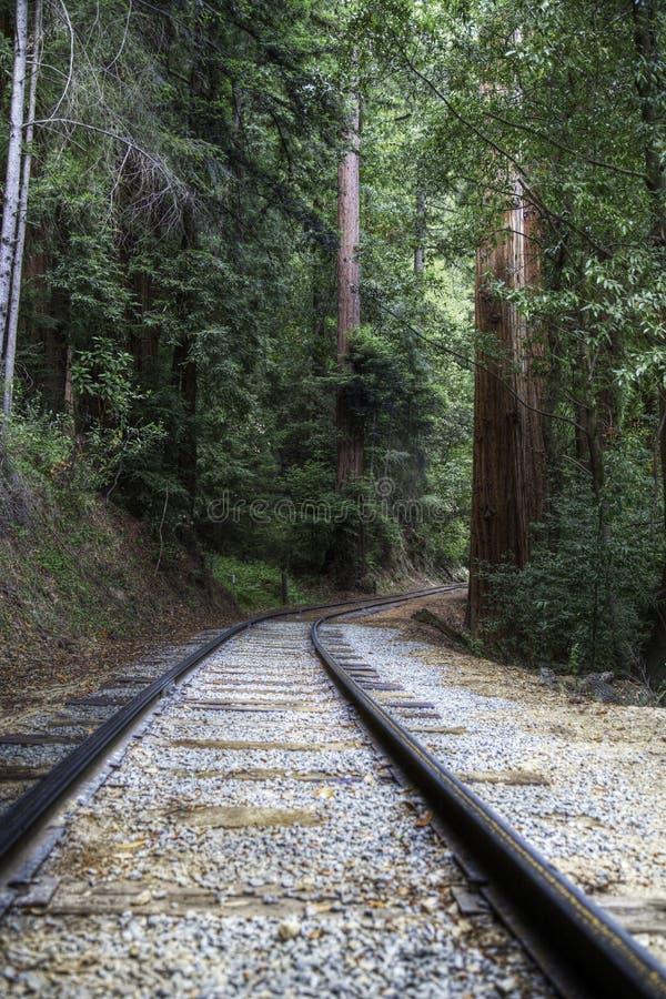 Ferrovia del campo di urlo fotografie stock libere da diritti