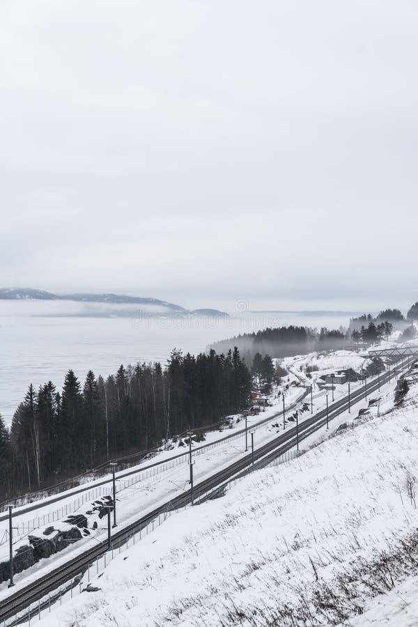 Ferrovia di inverno in Norvegia immagini stock