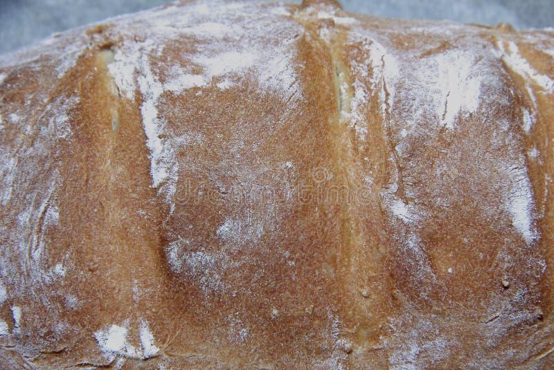 Fertiggerichte hausgemachtes Brot mit knackiger Weizenkruste lizenzfreie stockfotos