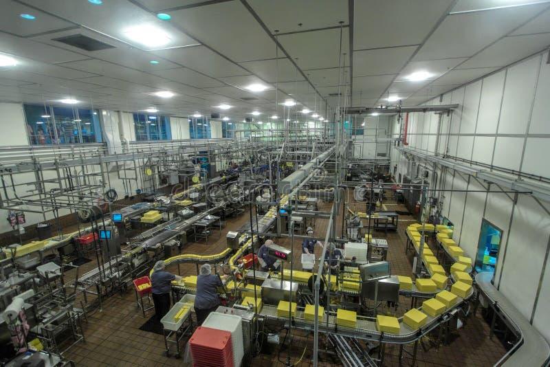 Fertigungsstraße an der Tillamook-Käsefabrik lizenzfreies stockfoto