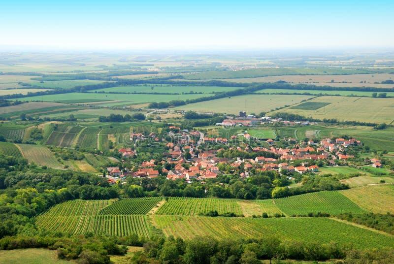 Fertila gröna vingårdar och liten by i sommar arkivbilder