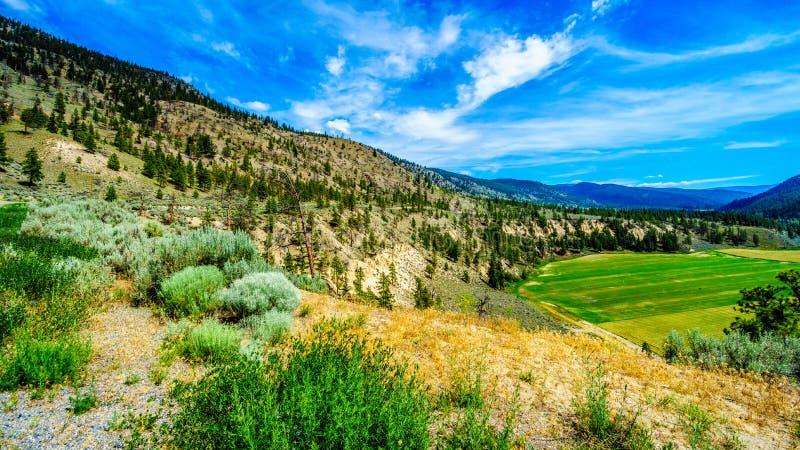 Fertile Farmland along the Nicola River between Merritt and Spences Bridge in British Columbia. Canada stock photo
