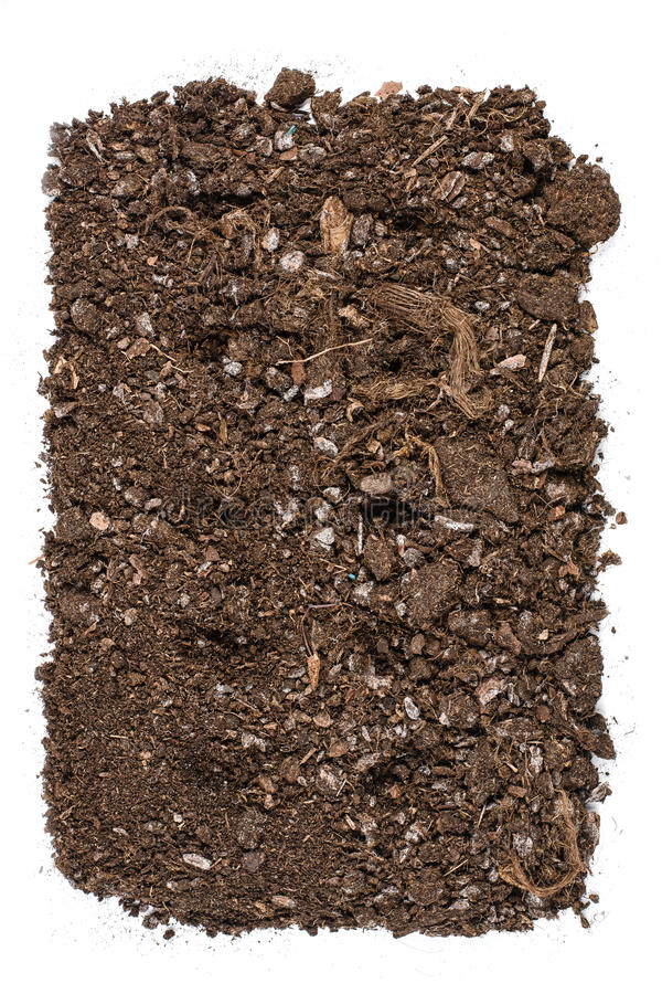 Download Fertile Garden Soil Texture Background Top View Isolated On White  Stock Image   Image: