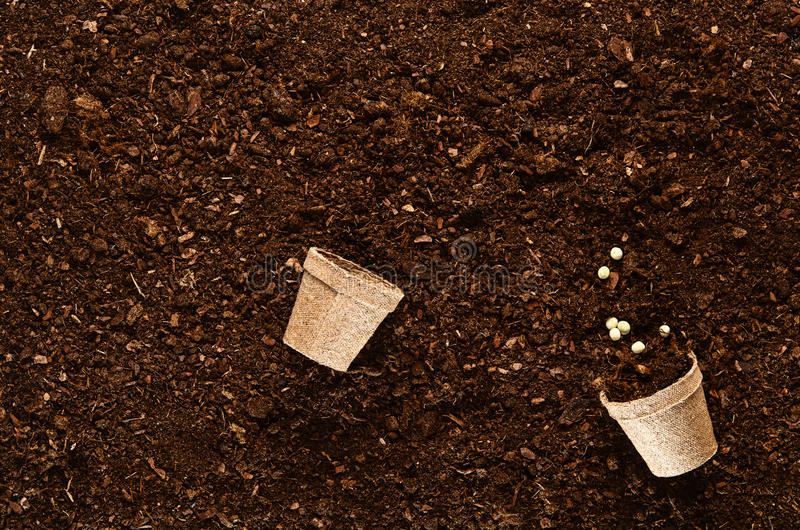 Download Fertile Garden Soil Texture Background Top View Stock Photo    Image: 80867979
