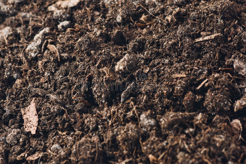 Download Fertile Garden Soil Texture Background Top View Stock Photo    Image: 84991154