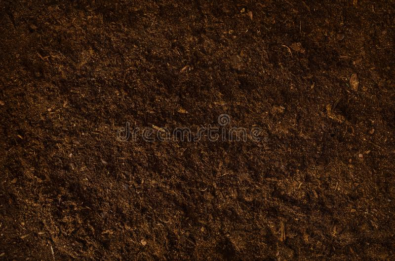 Fertile garden soil texture background top view royalty free stock images