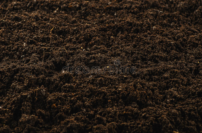 Download Fertile Garden Soil Texture Background Top View Stock Photo    Image: 88302865
