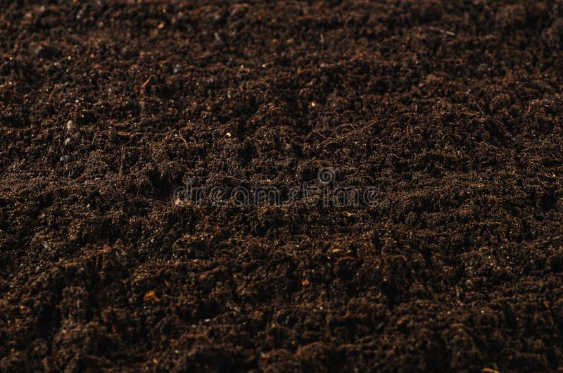 Beautiful Download Fertile Garden Soil Texture Background Top View Stock Photo    Image: 88719508