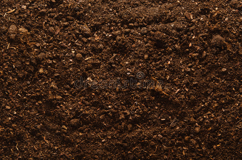 Captivating Download Fertile Garden Soil Texture Background Top View Stock Photo    Image: 80867603