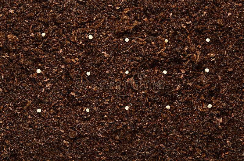 Download Fertile Garden Soil Texture Background Top View Stock Photo    Image: 80867762