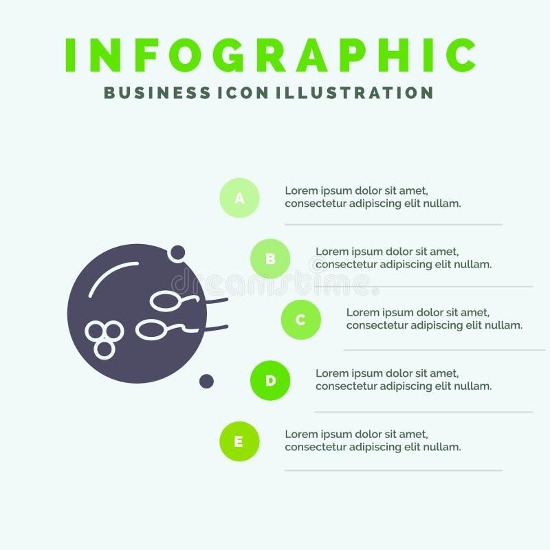 Fertile, procréation, reproduction, fond solide de présentation d'étapes d'Infographics 5 d'icône de sexe illustration de vecteur