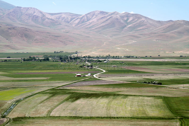 Fertile valleys. In Georgian valley, Turkey, volcanic soils combined with water from mountains are the best for agriculture and pasture lands royalty free stock photo