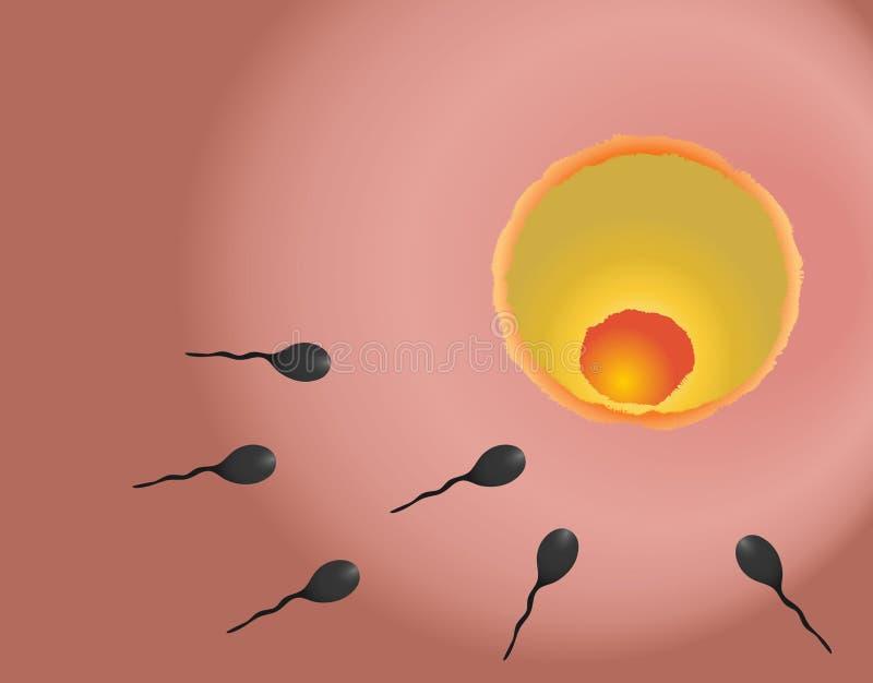 Fertilisation illustration de vecteur