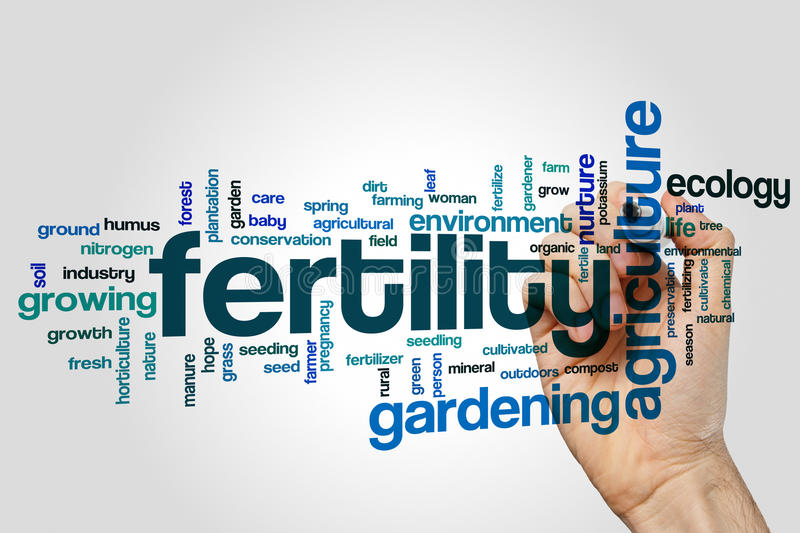 Fertility word cloud concept on grey background royalty free stock photo