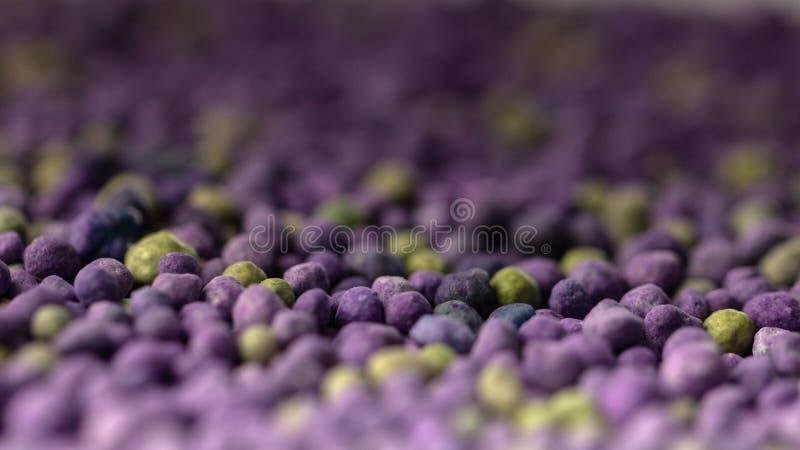Fertilizante mineral púrpura, acción prolongada con los microelementos, para el uso al césped en la primavera Fertilizante profes fotografía de archivo